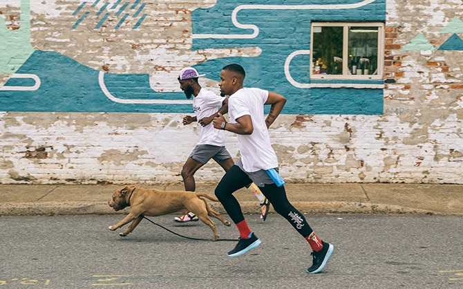 Two runners with a dog
