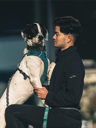 Dog standing on mans knee