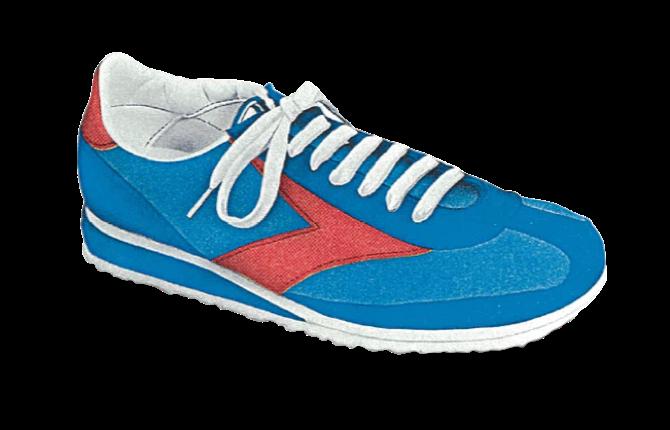 Villanova Shoe