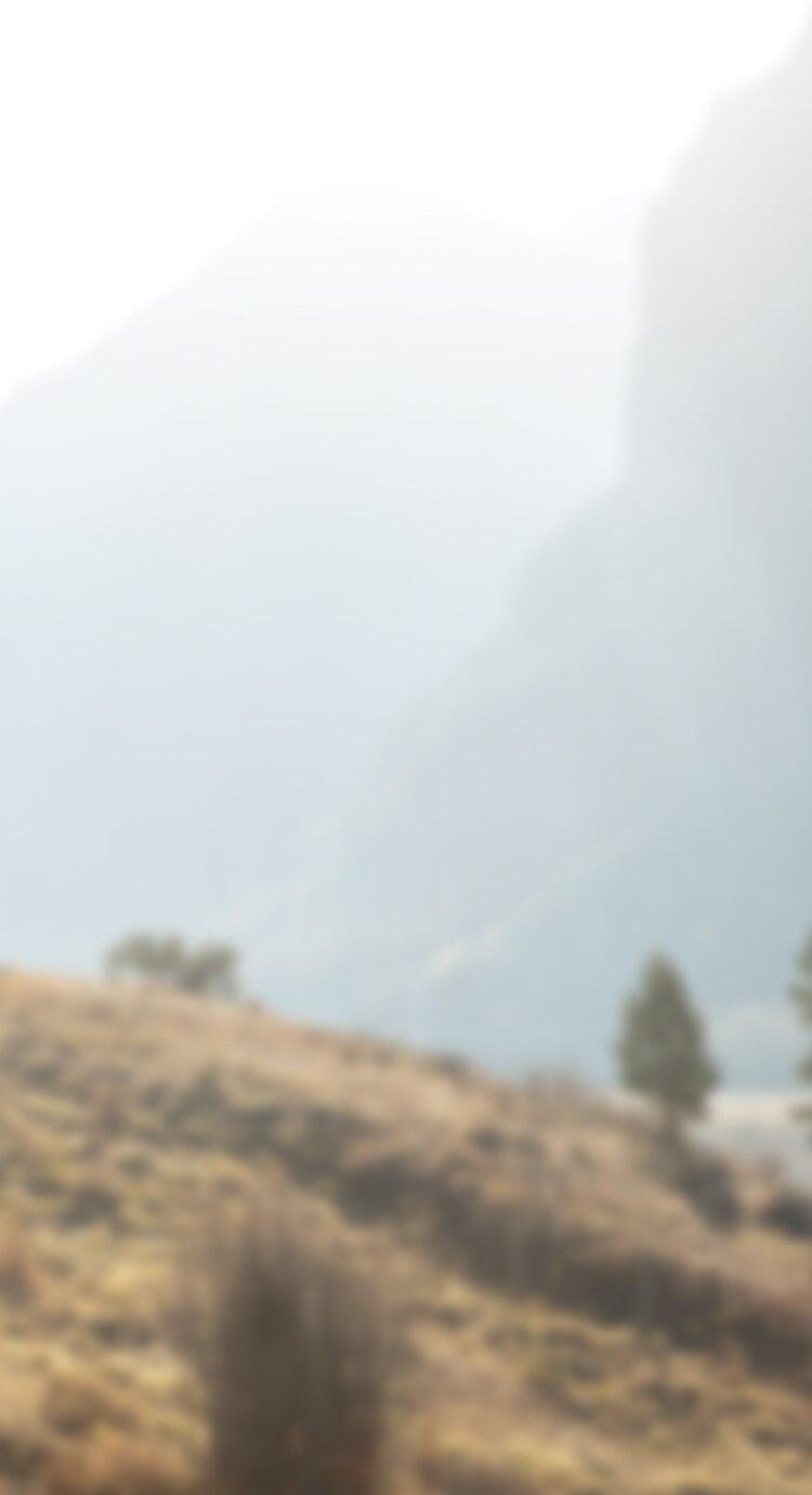 A blurry landscape image