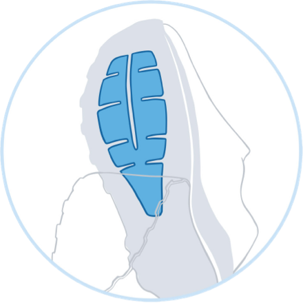 illustration of a Ballistic Rock Shield on the bottom of a Brooks trail shoe